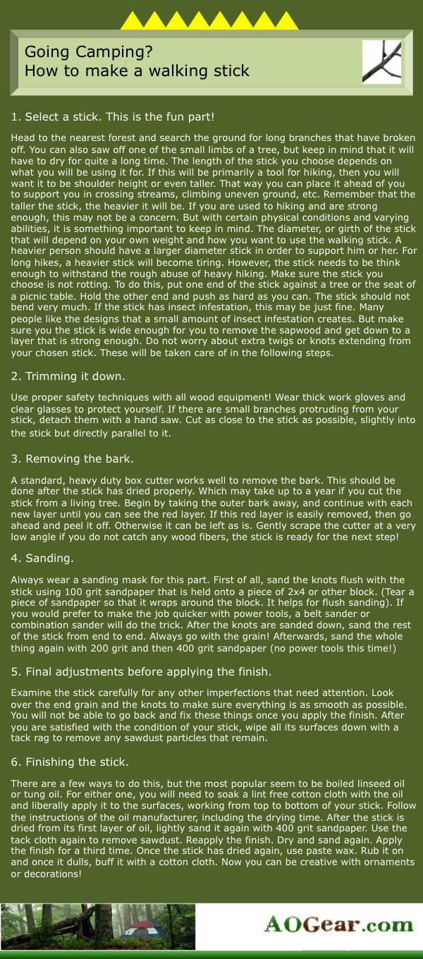 Steps to Making a Walking Stick Infographic